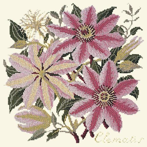 Clematis Needlepoint Kit Elizabeth Bradley Design Winter White
