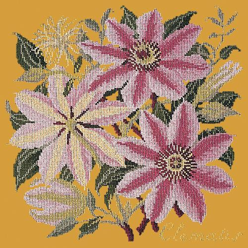 Clematis Needlepoint Kit Elizabeth Bradley Design Yellow