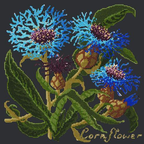 Cornflower Needlepoint Kit Elizabeth Bradley Design Black