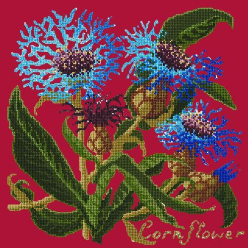 Cornflower Needlepoint Kit Elizabeth Bradley Design Bright Red