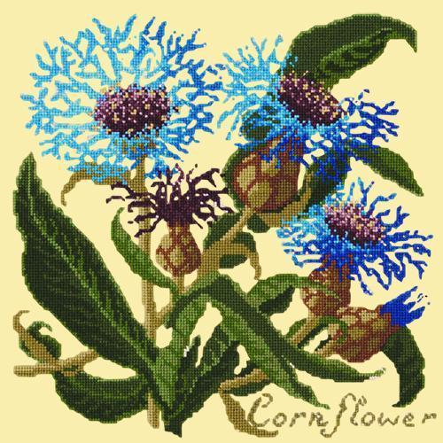 Cornflower Needlepoint Kit Elizabeth Bradley Design Butter Yellow