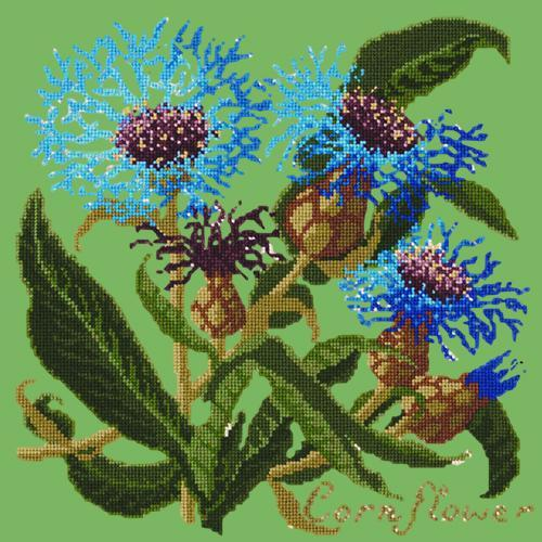 Cornflower Needlepoint Kit Elizabeth Bradley Design Grass Green