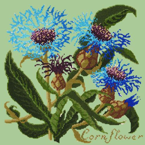 Cornflower Needlepoint Kit Elizabeth Bradley Design Pale Green