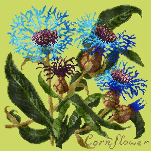 Cornflower Needlepoint Kit Elizabeth Bradley Design Pale Lime