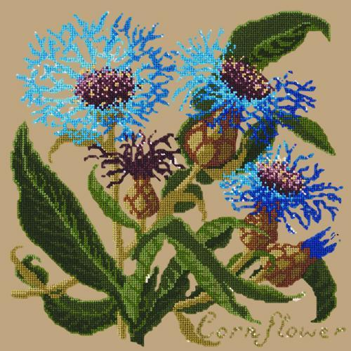 Cornflower Needlepoint Kit Elizabeth Bradley Design Sand