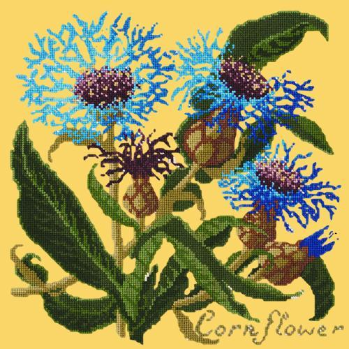 Cornflower Needlepoint Kit Elizabeth Bradley Design Sunflower Yellow