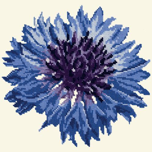 Cornflower Needlepoint Kit Elizabeth Bradley Design Winter White