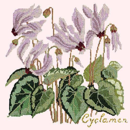 Cyclamen Needlepoint Kit Elizabeth Bradley Design Cream