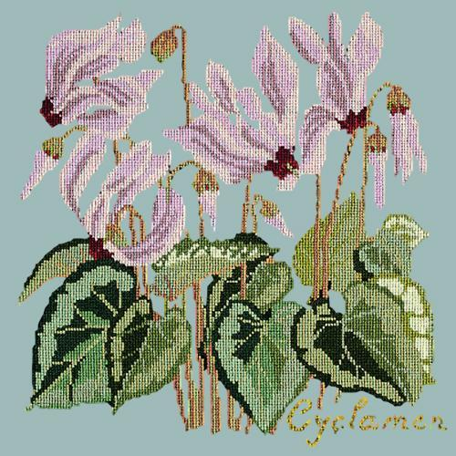 Cyclamen Needlepoint Kit Elizabeth Bradley Design Pale Blue