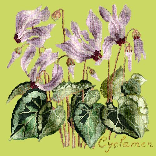 Cyclamen Needlepoint Kit Elizabeth Bradley Design Pale Lime
