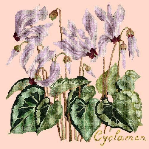Cyclamen Needlepoint Kit Elizabeth Bradley Design Salmon Pink