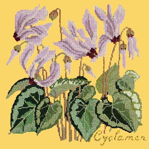 Cyclamen Needlepoint Kit Elizabeth Bradley Design Sunflower Yellow