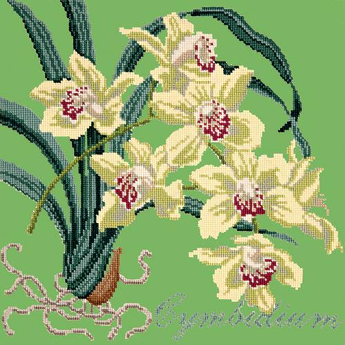 Cymbidium (Boat Orchid) Needlepoint Kit Elizabeth Bradley Design Grass Green