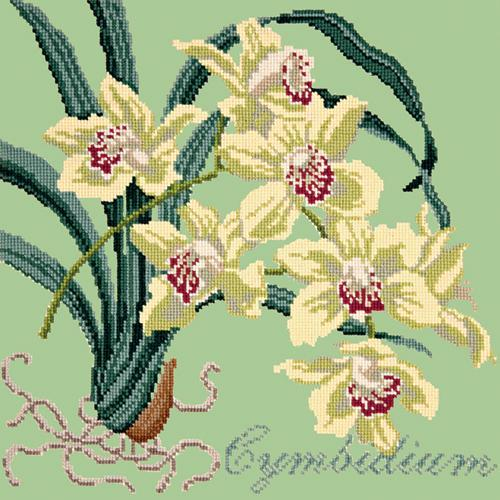 Cymbidium (Boat Orchid) Needlepoint Kit Elizabeth Bradley Design Pale Green