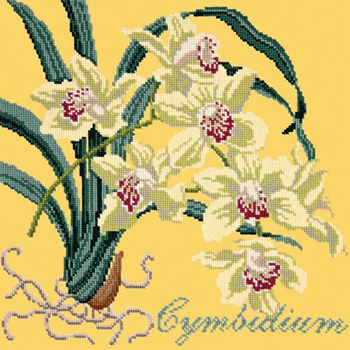 Cymbidium (Boat Orchid) Needlepoint Kit Elizabeth Bradley Design Sunflower Yellow