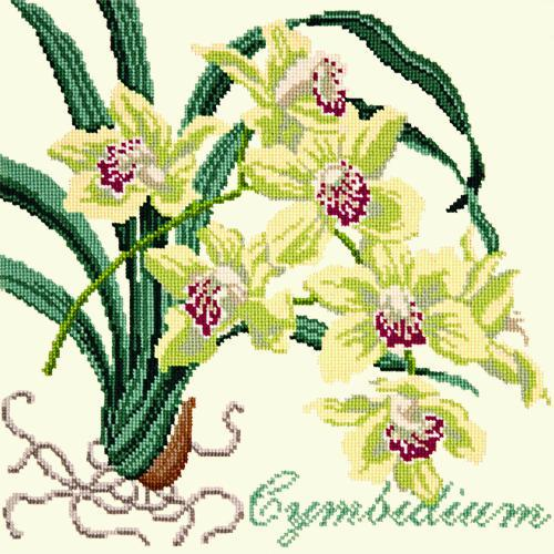 Cymbidium (Boat Orchid) Needlepoint Kit Elizabeth Bradley Design Winter White