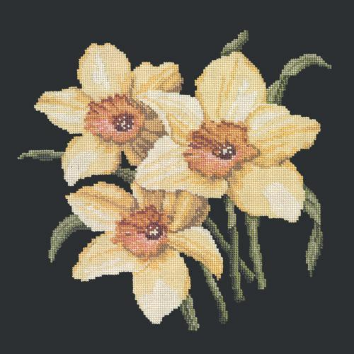 Daffodils Needlepoint Kit Elizabeth Bradley Design Black