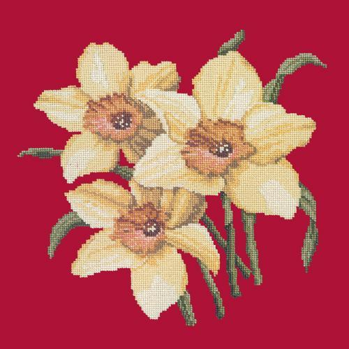 Daffodils Needlepoint Kit Elizabeth Bradley Design Bright Red