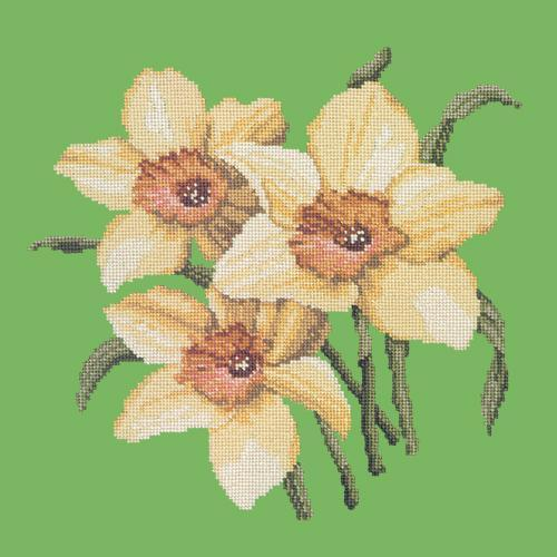 Daffodils Needlepoint Kit Elizabeth Bradley Design Grass Green