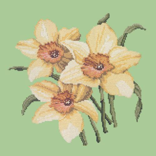Daffodils Needlepoint Kit Elizabeth Bradley Design Pale Green