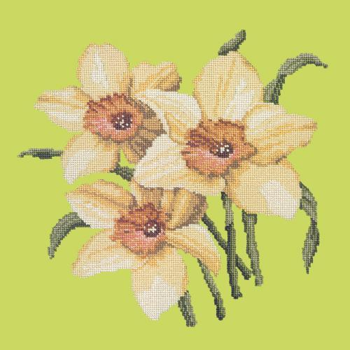 Daffodils Needlepoint Kit Elizabeth Bradley Design Pale Lime