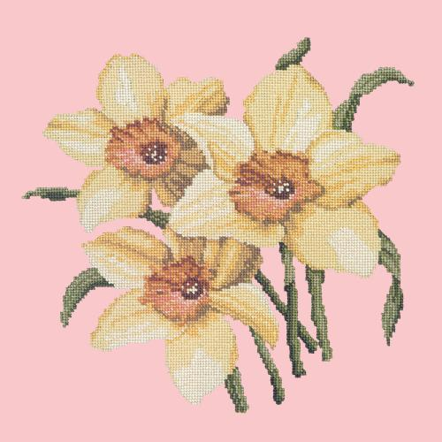 Daffodils Needlepoint Kit Elizabeth Bradley Design Pale Rose