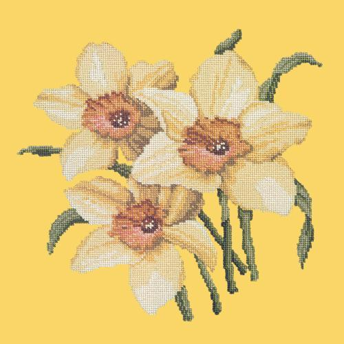 Daffodils Needlepoint Kit Elizabeth Bradley Design Sunflower Yellow