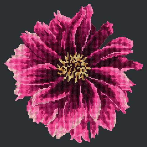 Dahlia Needlepoint Kit Elizabeth Bradley Design Black