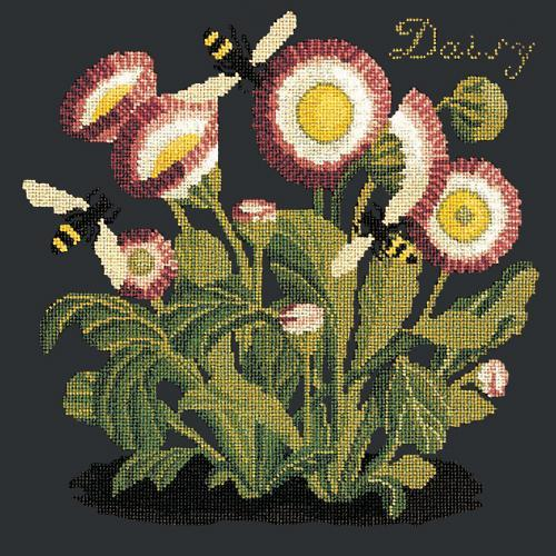 Daisy Needlepoint Kit Elizabeth Bradley Design Black
