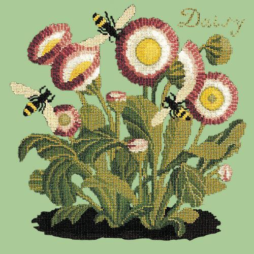 Daisy Needlepoint Kit Elizabeth Bradley Design Pale Green