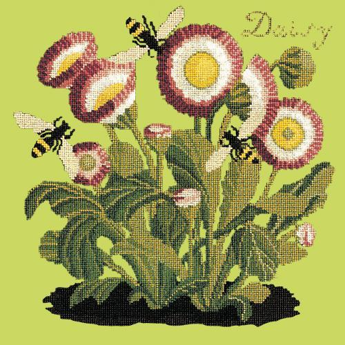Daisy Needlepoint Kit Elizabeth Bradley Design Pale Lime