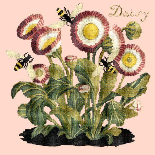 Daisy Needlepoint Kit Elizabeth Bradley Design Pale Rose