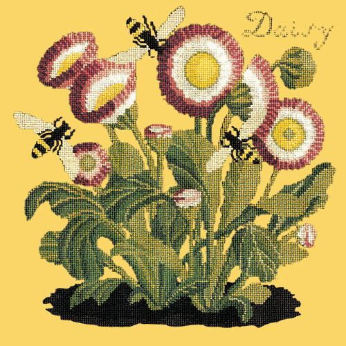 Daisy Needlepoint Kit Elizabeth Bradley Design Sunflower Yellow