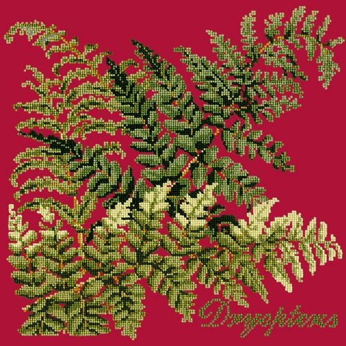 Dryopteris Needlepoint Kit Elizabeth Bradley Design Bright Red
