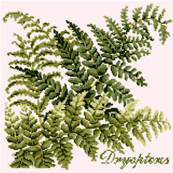 Dryopteris Needlepoint Kit Elizabeth Bradley Design Cream