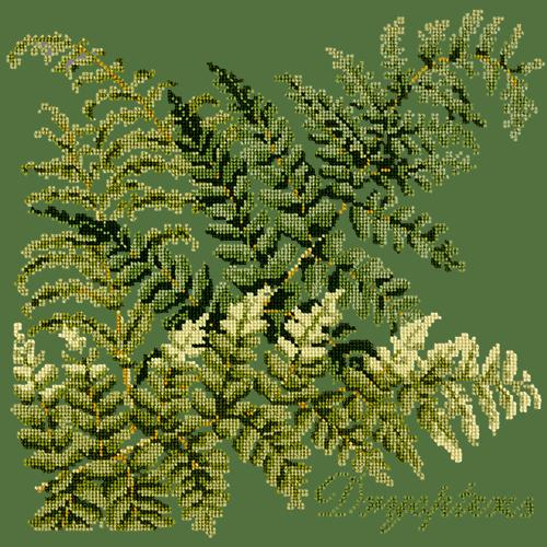 Dryopteris Needlepoint Kit Elizabeth Bradley Design Dark Green