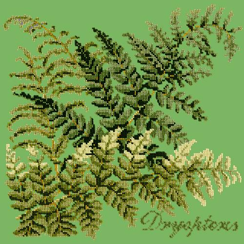 Dryopteris Needlepoint Kit Elizabeth Bradley Design Grass Green