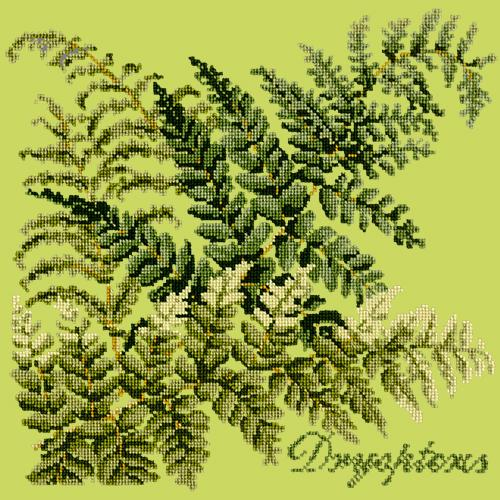 Dryopteris Needlepoint Kit Elizabeth Bradley Design Pale Lime