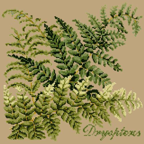 Dryopteris Needlepoint Kit Elizabeth Bradley Design Sand