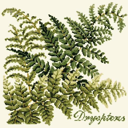 Dryopteris Needlepoint Kit Elizabeth Bradley Design Winter White
