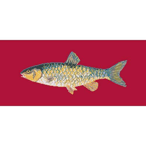 Freshwater Chub Needlepoint Kit Elizabeth Bradley Design Bright Red