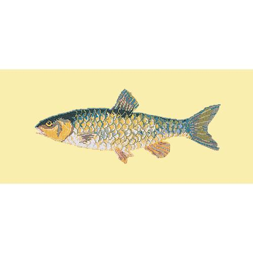 Freshwater Chub Needlepoint Kit Elizabeth Bradley Design Butter Yellow