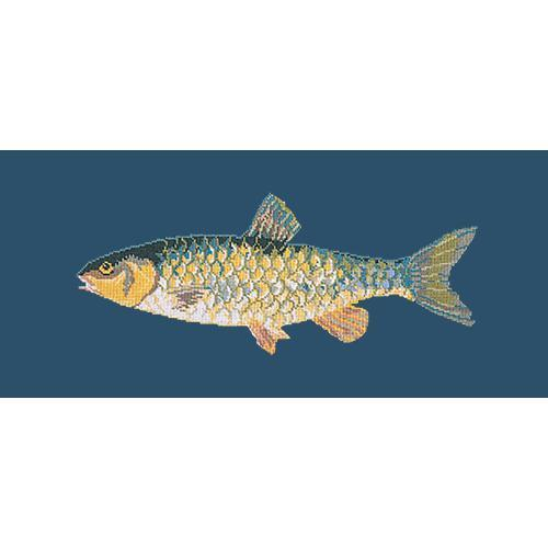Freshwater Chub Needlepoint Kit Elizabeth Bradley Design Dark Blue