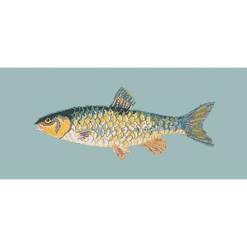 Freshwater Chub Needlepoint Kit Elizabeth Bradley Design Pale Blue