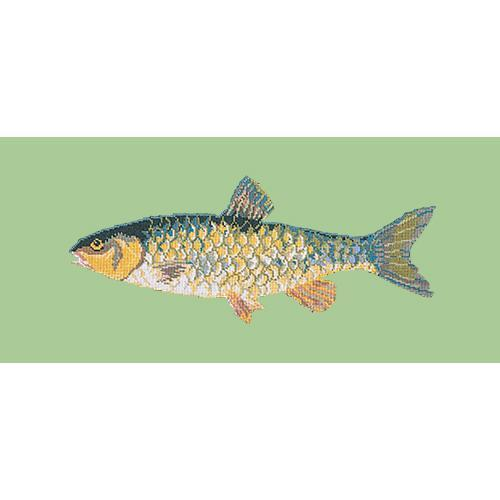 Freshwater Chub Needlepoint Kit Elizabeth Bradley Design Pale Green