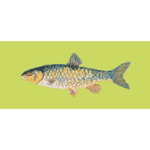 Freshwater Chub Needlepoint Kit Elizabeth Bradley Design Pale Lime