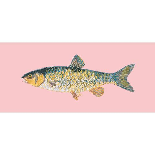Freshwater Chub Needlepoint Kit Elizabeth Bradley Design Pale Rose