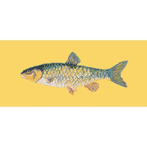 Freshwater Chub Needlepoint Kit Elizabeth Bradley Design Sunflower Yellow