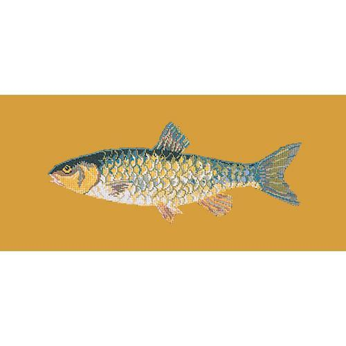Freshwater Chub Needlepoint Kit Elizabeth Bradley Design Yellow