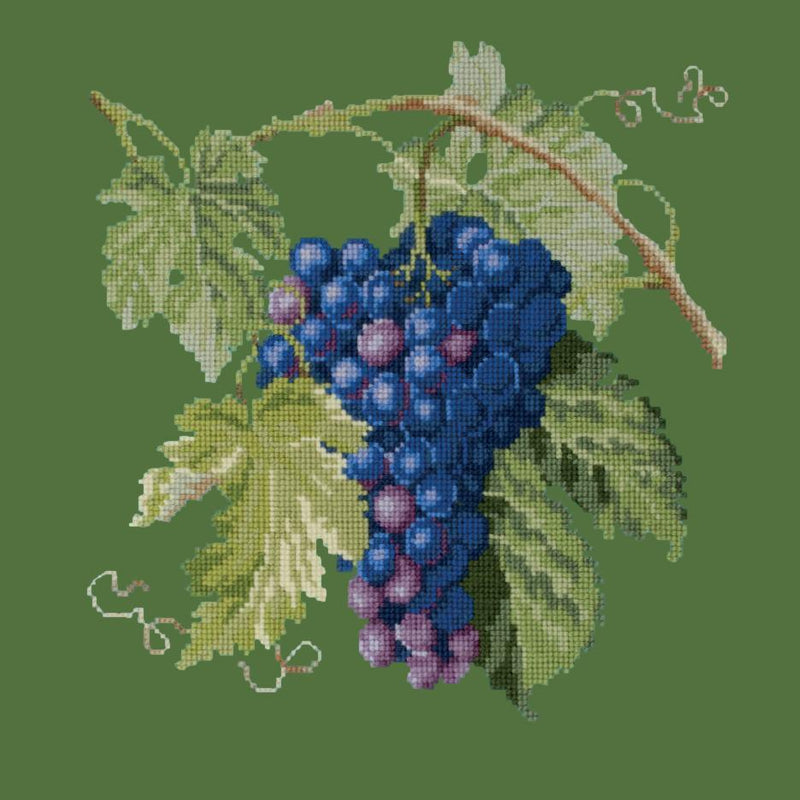 Grapes Needlepoint Kit Elizabeth Bradley Design Dark Green